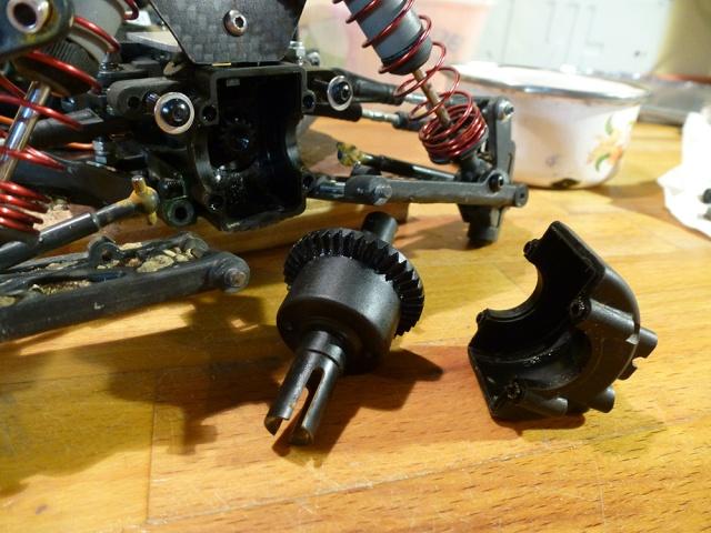 Twin Hammers Aureli1 P1010126
