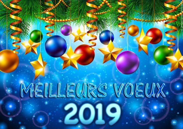 Le FCS vous présente tous ses meilleurs voeux pour 2019 Bonne-10
