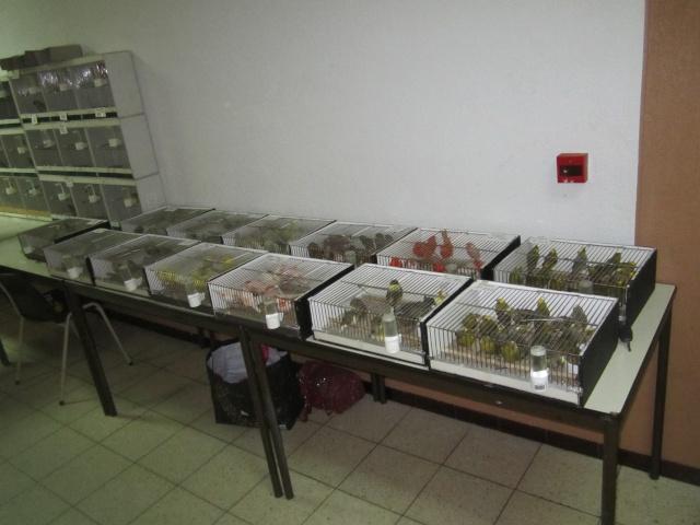 Bourse à Visé  Soumba33
