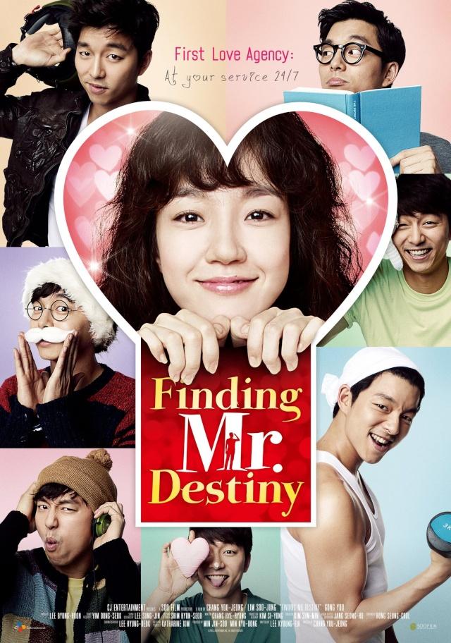 Finding Mr. Destiny 13299710