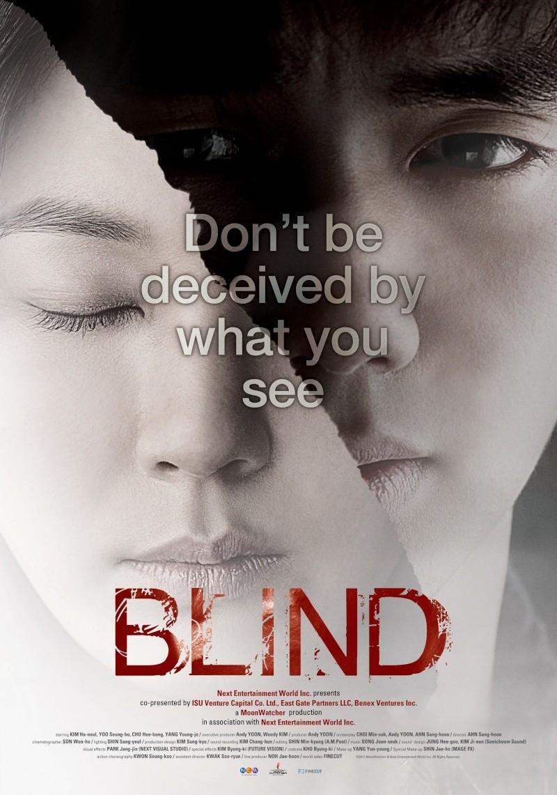 Blind Mov_d910