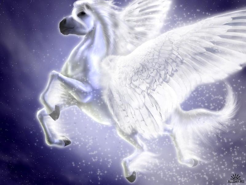 Créatures fantastiques au grès de la toile 2013-2014 Licorn10
