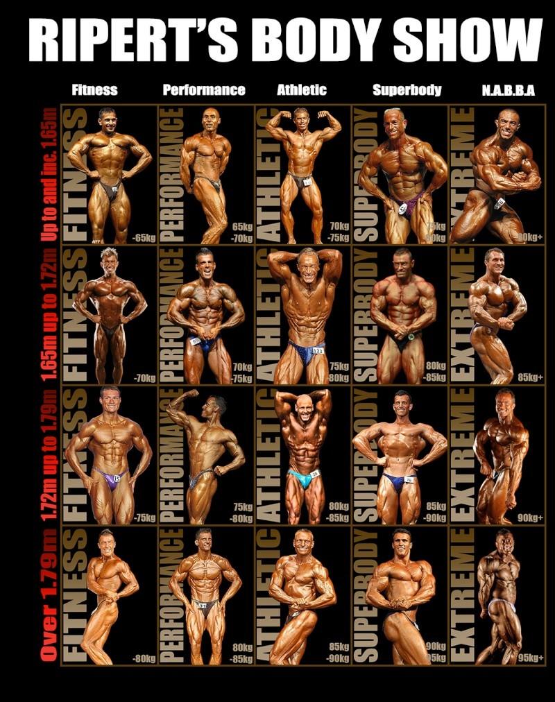 body - RIPERT'S BODY SHOW 2014 Cates_11