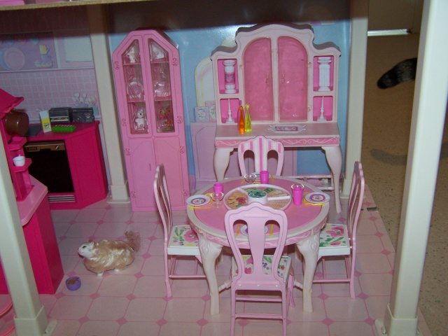 [BARBIE] Les Barbies de nhtpirate1980 100_4551