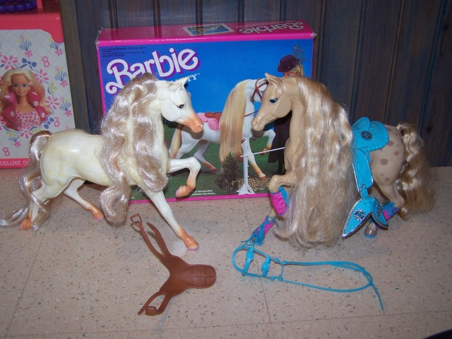 [BARBIE] Les Barbies de nhtpirate1980 100_4614