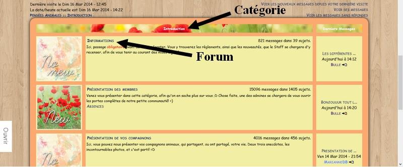 Débuter sur le forum Cat-fo10