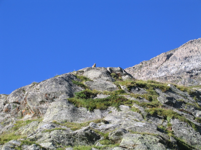 Le grand tour de l'Iseran par le Col des Fours 2008_028
