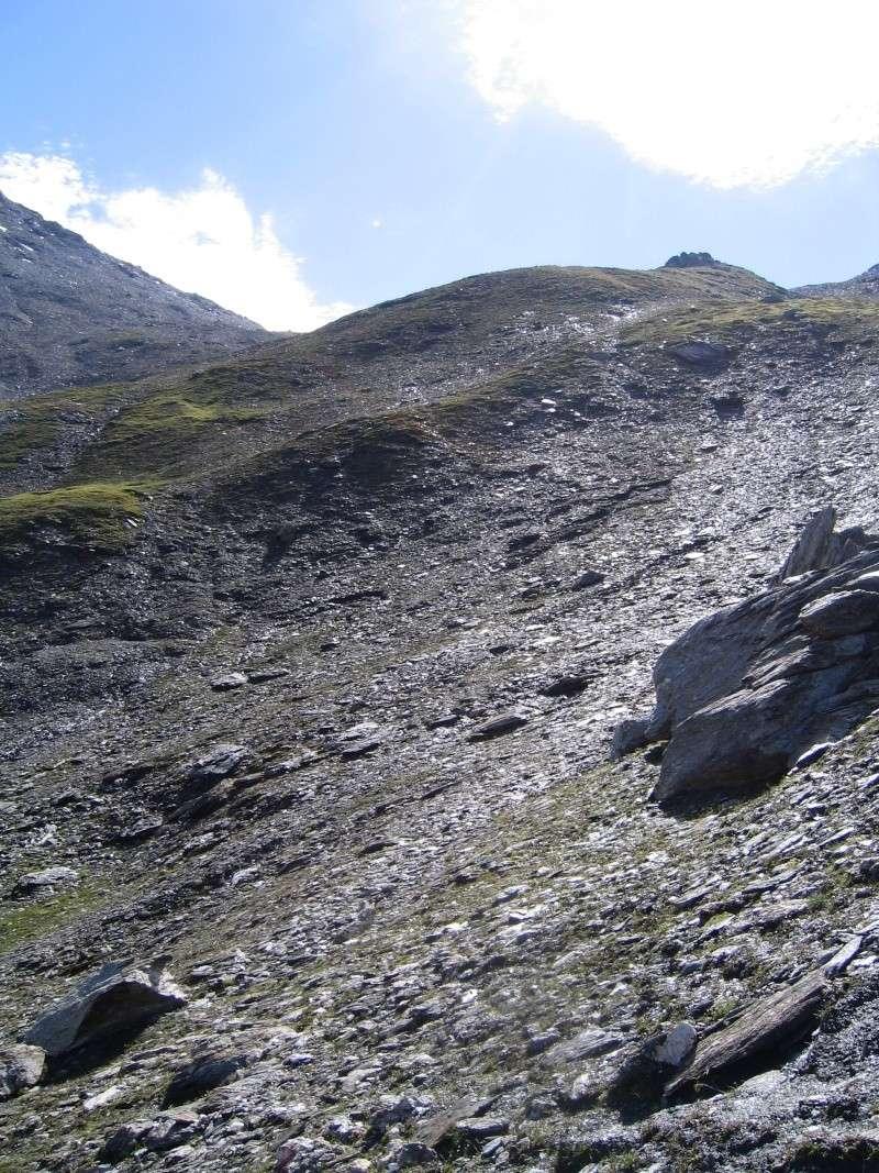 Le grand tour de l'Iseran par le Col des Fours 2008_035