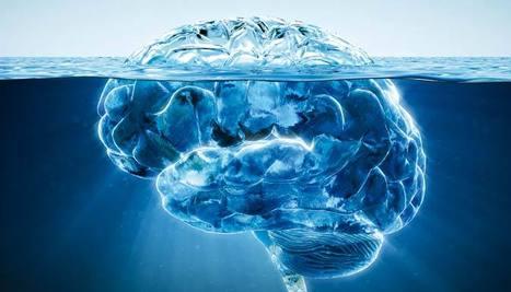 les dernières découvertes sur la pensée et le cerveau Cervea10
