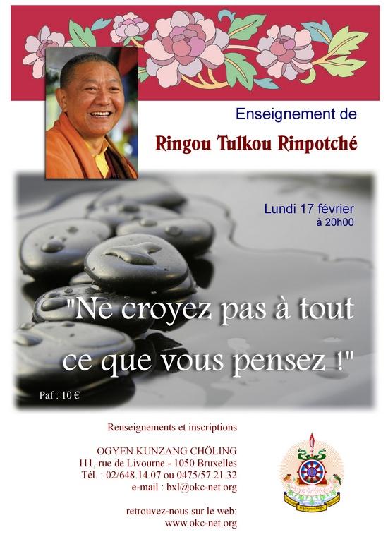 RINGU Tulku à Bruxelles Février 2014 Rtrbxl10