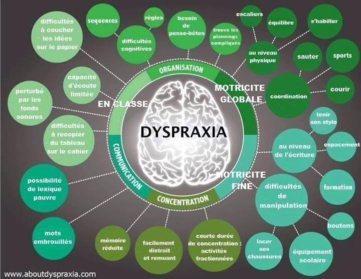 Schéma de la Dyspraxie Dyspra11