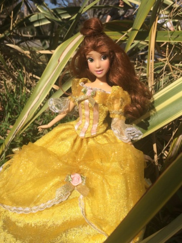 Ma collection des poupées des films de DISNEY - Page 8 Img_0011