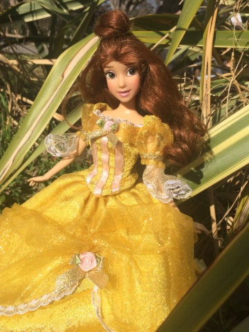 Ma collection des poupées des films de DISNEY - Page 8 Img_0012