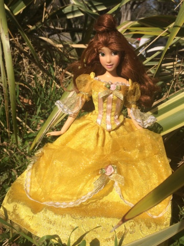 Ma collection des poupées des films de DISNEY - Page 8 Img_0019