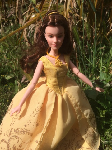 Ma collection des poupées des films de DISNEY - Page 8 Img_3025