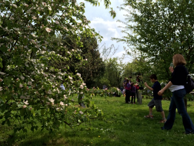 Stand à la fête de la nature - 12 avril - St Jacques de la Lande Img_0020