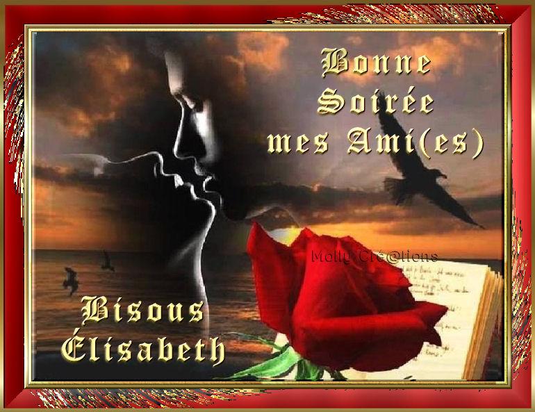 BONNE SOIREE DE SAMEDI 1-lisa17