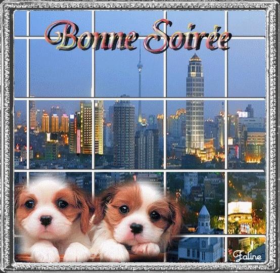 Bonne SOIREE du Dimanche 03/11 Cc9ade10