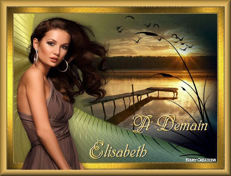 BONNE SOIREE DE MARDI Elisab46