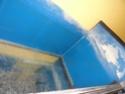 Mon projet shrimp room Dsc09910