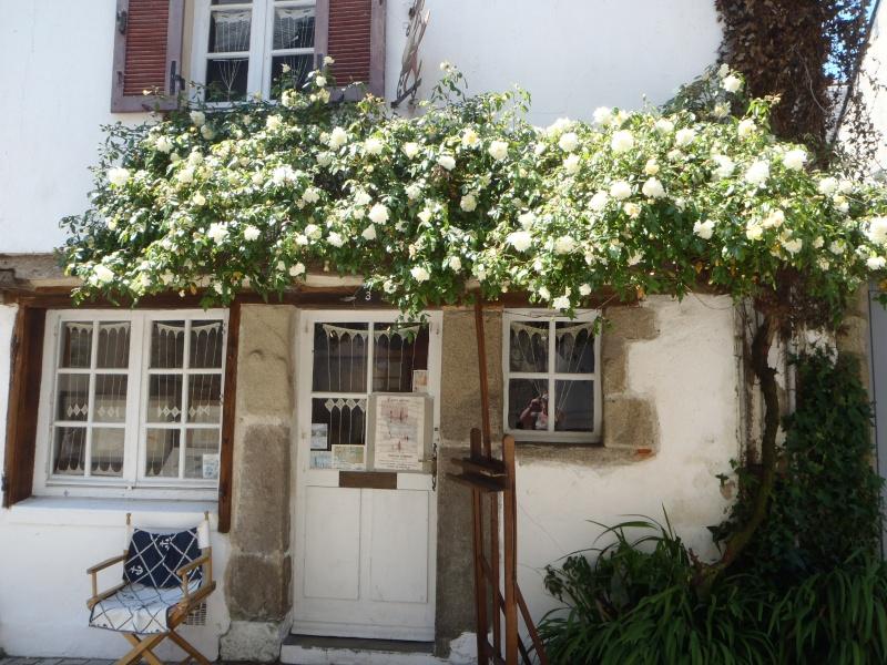 les Médiévales de Guérande, Mai 2014  (Terminées) 13-p5111