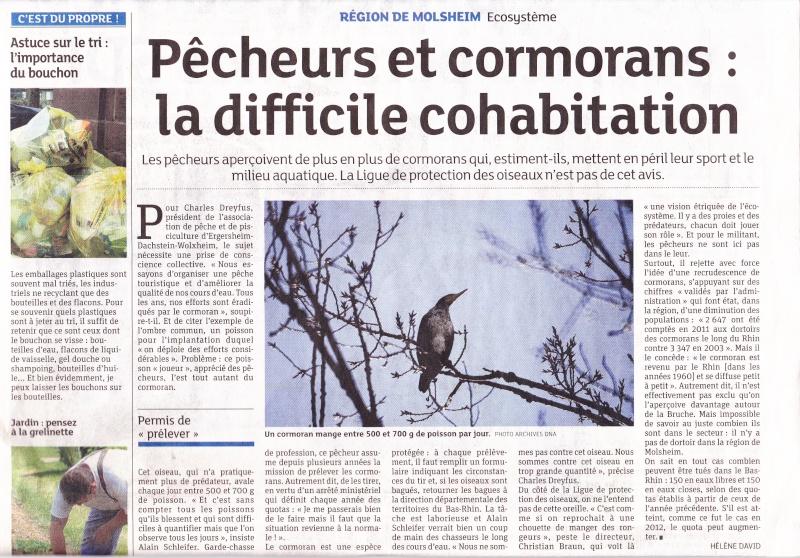 Les Cormorans Dna_co10