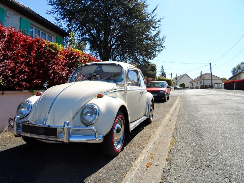 Herbie54 est de retour mais avec Choupette cette fois =) Sam_0711