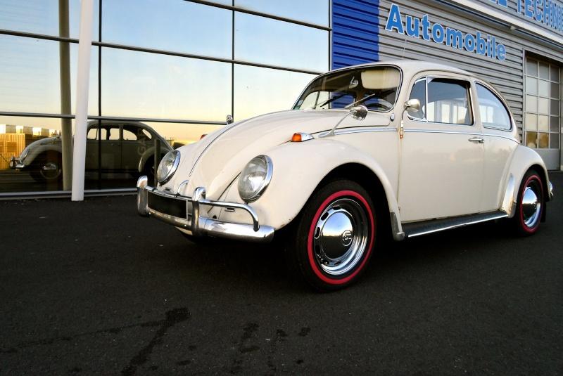 Herbie54 est de retour mais avec Choupette cette fois =) Sam_0712