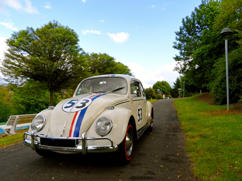 Herbie54 est de retour mais avec Choupette cette fois =) Sam_0811