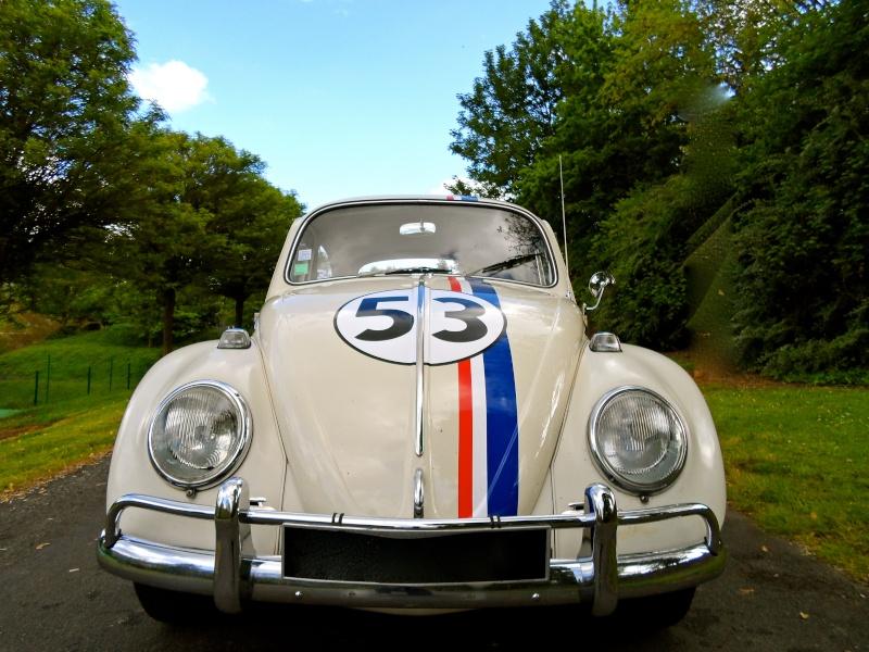 Herbie54 est de retour mais avec Choupette cette fois =) Sam_0812