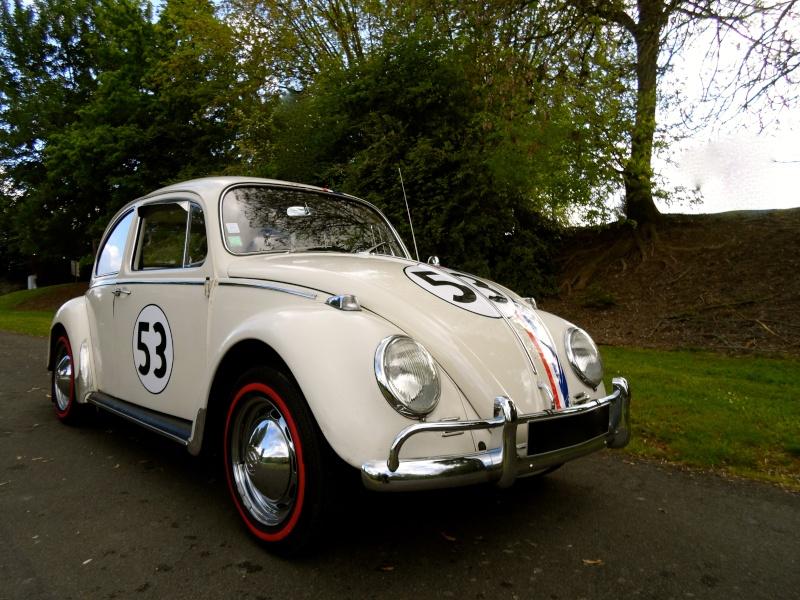 Herbie54 est de retour mais avec Choupette cette fois =) Sam_0813