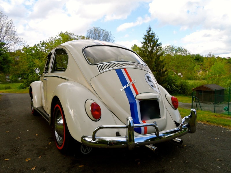 Herbie54 est de retour mais avec Choupette cette fois =) Sam_0814