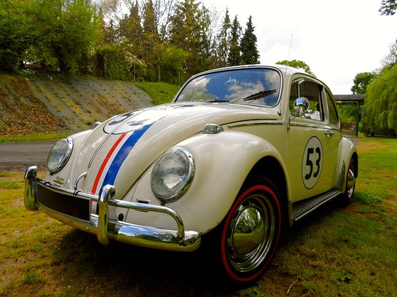 Herbie54 est de retour mais avec Choupette cette fois =) Sam_0818