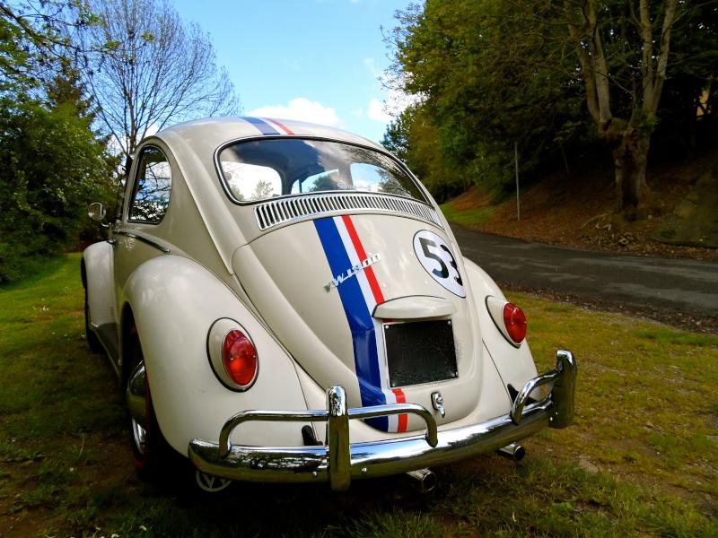Herbie54 est de retour mais avec Choupette cette fois =) Sam_0819