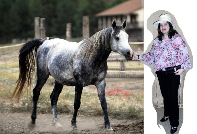 photo montage avec un cheval A3vn2m10