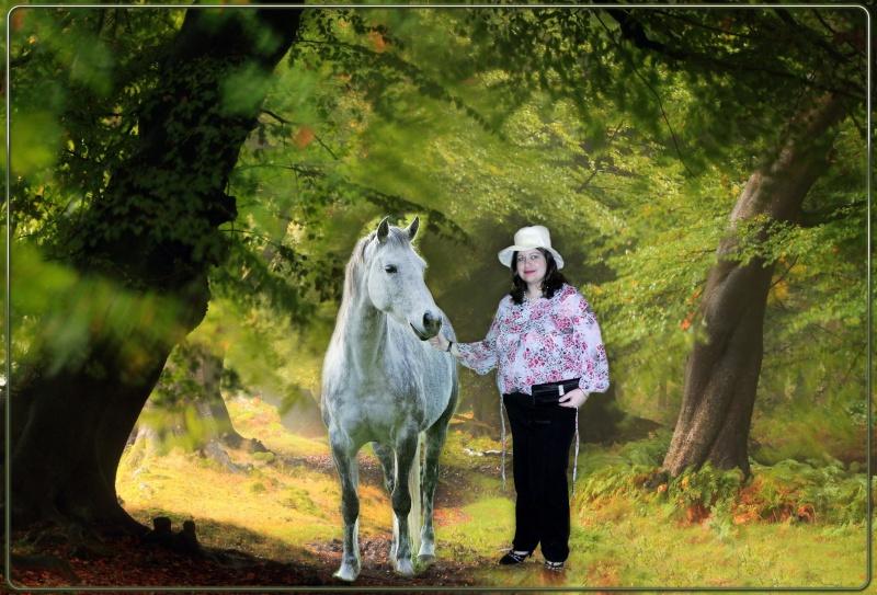 photo montage avec un cheval Ho4x2v10