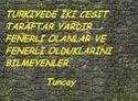 Fenerbahçenin bu seneki durumu Images18