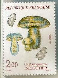Les champignons timbrés Timbre12