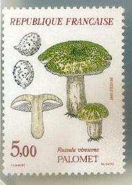 Les champignons timbrés Timbre15