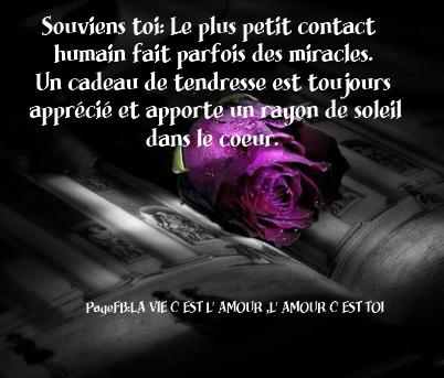 LA PENSEE DU JOUR . 14560810