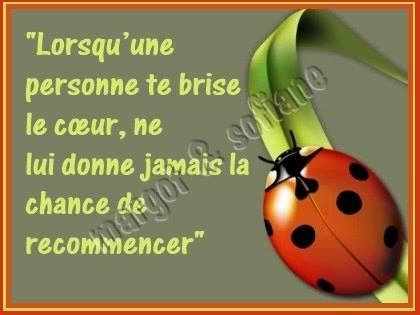 LA PENSEE DU JOUR . 16564310
