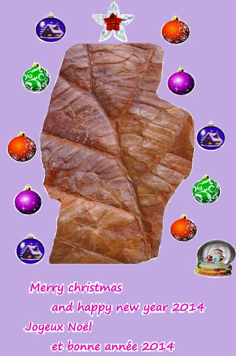 Un joyeux Noël à toutes et tous Joyeux10