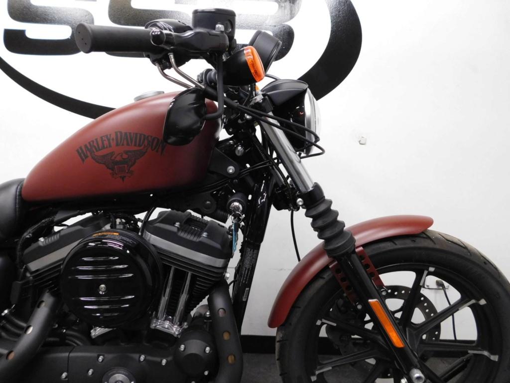 Harley Iron 883 au 1/9 - Page 5 60000010