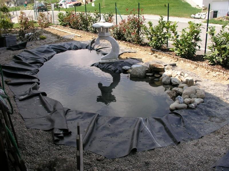 Evolution de mon étang au fil des années P1010013