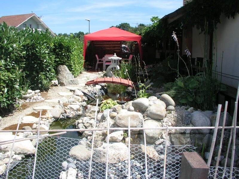 Evolution de mon étang au fil des années P1010021