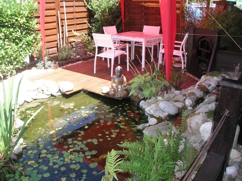 Evolution de mon étang au fil des années P1010110