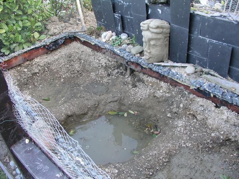 Evolution de mon étang au fil des années P1010510