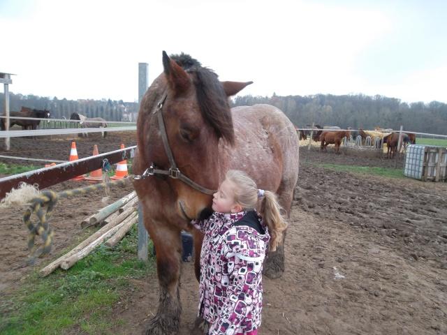 Thème de décembre : les chevaux et les enfants - Page 2 09210