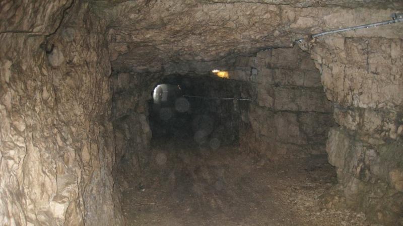 Monte Cengio - Forte Corbin - fine maggio data da definire Img_0721