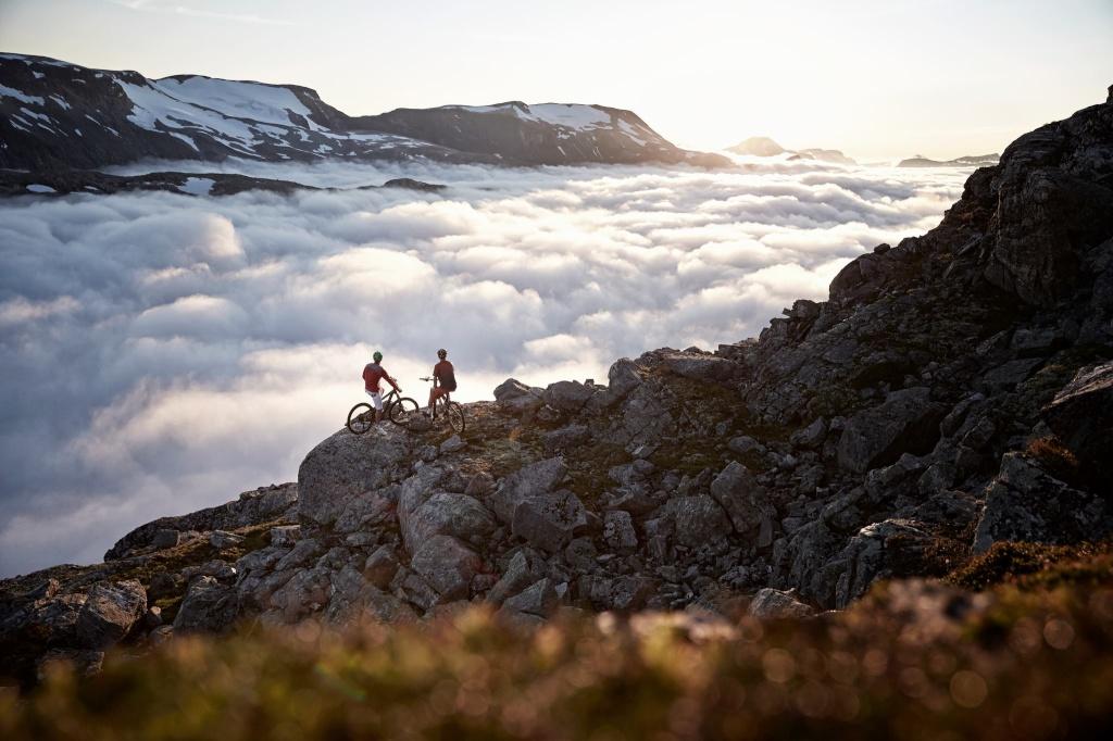 Belles images de paysages à vélo, mais pas que...  12667510
